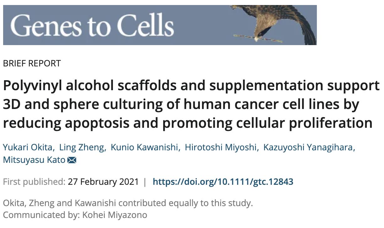 LVSEMを使った癌細胞の研究がGenes to Cells誌に掲載されました。